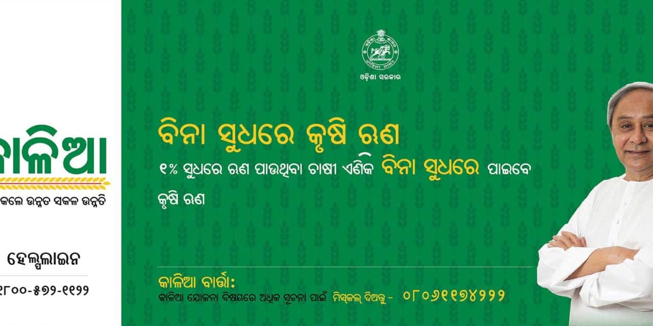KALIA Scheme odisha, Kaliya Scheme Beneficiary List and kalia.co.in