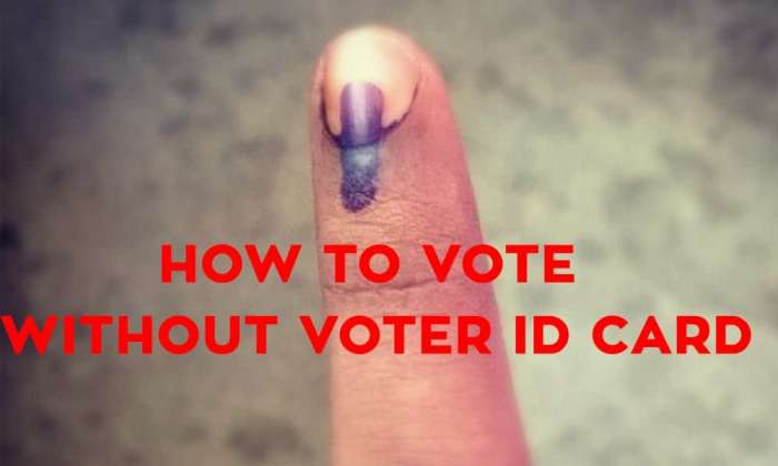 Vote Without Voter ID Card