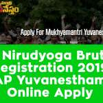 AP Nirudyoga Bruthi Registration 2019 – AP Yuvanestham – Online Apply