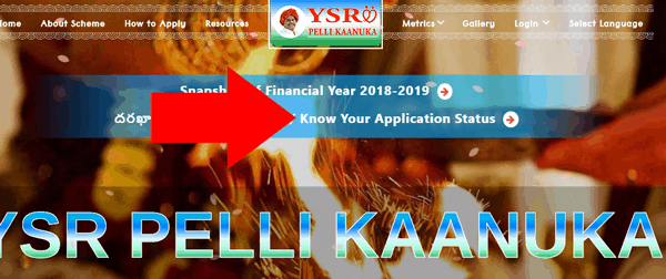 YSR Pelli kanuka Application